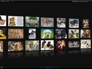 Google Image Search for Puppies with PicLens