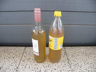 Zwei Flaschen Brennesseljauche.